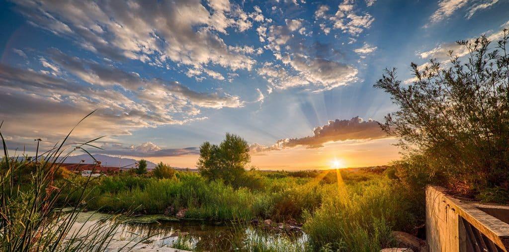 Réveil milieu nature