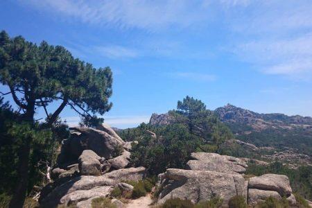 Corse _ Col de Bavella